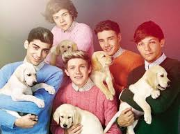 one direction wallpapers 14 nathii1