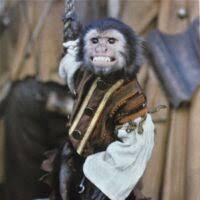Jack (scimmia) | Pirati dei Caraibi Wiki | Fandom