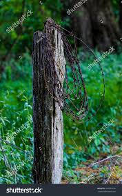Barbed Wire Hanging On Rustic Fence Stock Photo Edit Now 429251536