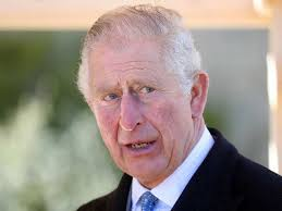 prince charles: Royals breathe a sigh of relief as Prince Charles recovers  from Covid-19 - The Economic Times
