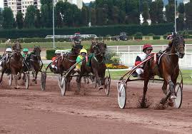 LeTROT : Site Officiel des Courses au Trot