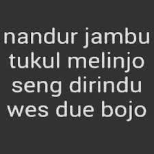 √ dp bbm kata kata lucu bahasa jawa buat status fb ngakak