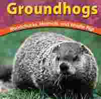 Groundhogs: Woodchucks, Marmots, and Whistle Pigs, Book by Adele D.  Richardson (Hardcover) | www.chapters.indigo.ca