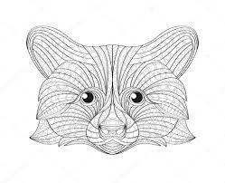 Hand Getrokken Doodle Overzicht Wasbeer Illustratie Decoratieve