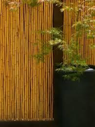 10 Japanese Fences Ideas Japanese Fence Japanese Garden Bamboo Fence