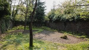 my own garden bisweilen