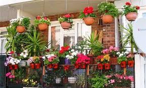 colorful balcony terrac garden design