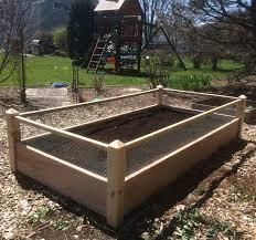 one 3x8x2 raised garden bed with rabbit