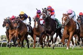 Caulfield Cup 2020: Runner-by-runner ...