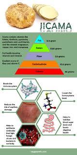 nutrition summary health properties