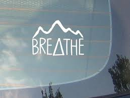 Breathe Freedom Nature Car Sticker Decal With Zebra S