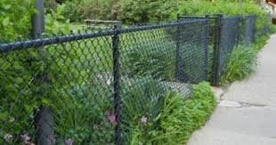 Pin By Jazmine Mays On Yard And Garden Black Chain Link Fence Chain Link Fence Painted Chain Link Fence