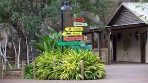 houston zoo in houston expedia de