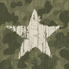 military camouflage background with