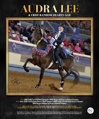 CBMF Random Hearts GCH National Horseman