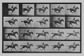 Jockey on a galloping horse, plate 627 f - Eadweard Muybridge as art print  or hand painted oil.