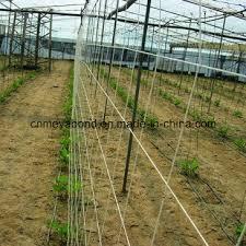China 100 Virgin Material Plastic Trellis Net Plant Climbing Support Netting Cucumber Netting Vine Netting Pea China Cucumber Plant Support Net And Bean Plant Support Net Price