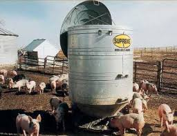 Pig Feeders And Hog Feeders Create An Efficient Feeding Operation And Save Money