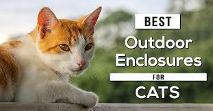 Top 8 Best Outdoor Cat Enclosures Playpens 2020 Review