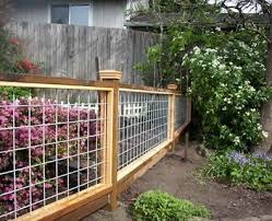 Fencing Trellis Greenhouses Backyard Fences Fence Design Cattle Panel Fence