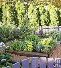 vegetable garden layout tips better