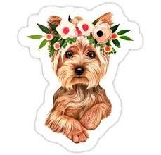 Cute Yorkie Dog Sticker In 2020 Dog Stickers Yorkie Dogs Yorkie