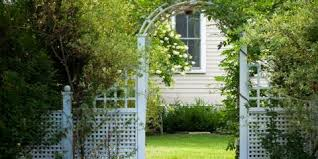 4 Do S Don Ts Of Decorating Your Fence With Vines Aaa Fence Inc Anchorage Nearsay