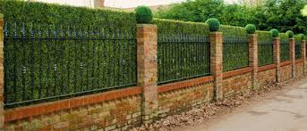6 Unique Hedge Design Ideas Jimsmowing Com Au