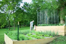 early spring vegetable garden tips with