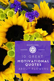 great motivational quotes about flowers rockflower auto retailing