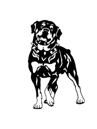 Buy 16cm 10 4cm Rottweiler Dog Designed Car Sticker Personality Vinyl Decal Car Styling Truck Decoration Car Sticks