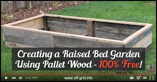 raised bed garden using pallet wood