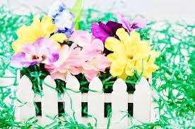 Diy White Picket Fence Flower Garden Annmarie John Llc A Travel And Lifestyle Blog
