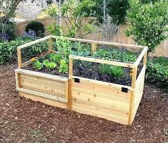 raised garden beds raised