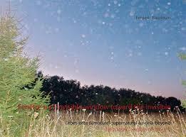 Fenetre sur l'invisible-window toward the invisible - orbes-orbs  surnaturel-supernatural au-dela-be - Frédéric Baudouin - Books On Demand -  Grand format - Pavé dans la Mare ELANCOURT