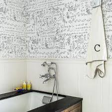 aviary wallpaper design ideas