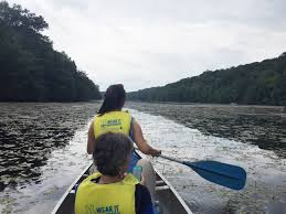 Busy Beavers and Awesome Osprey; a Canoeing Adventure on Canopus Lake | New  York State Parks Blog