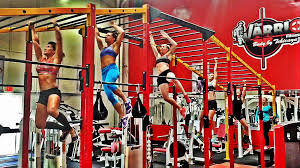 the workout the warrior fitness