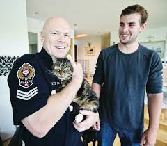 Cat that hopped a ride in delivery van tracked down by big-hearted cop |  Times Colonist