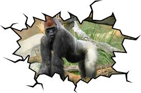 Gorilla Wall Decal Silverback Gorilla Art Decor 18 X22 Contemporary Wall Decals By Vwaq Vinyl Wall Art Quotes And Prints