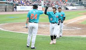 L.J. Mazzilli of the Long Island Ducks receives a high five after his home  run - July 2, 2019 Photo on OurSports Central