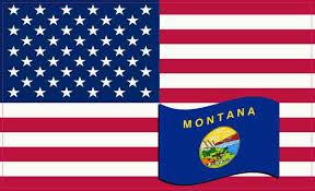 5x3 United States Of America And Montana Flag Sticker Patriotic Car Decal Stickertalk
