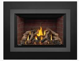 gdix4n oakville x4 gas fireplace insert