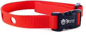 Amazon Com Extreme Dog Fence Dog Collar Replacement Strap Red Compatible With Nearly All Brands And Models Of Underground Dog Fences Pet Supplies