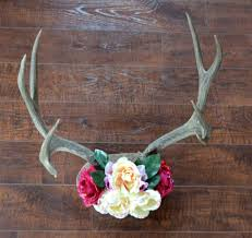 rustic chic antler decor diy ever