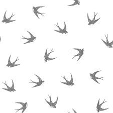 swallow wallpapers high resolution
