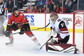 Arizona Coyotes Turn to Adin Hill to Solve Goaltending Issues