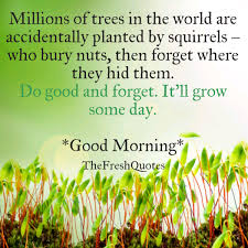 beautiful pictures of nature good morning quotes