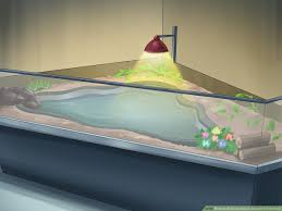 How To Build An Indoor Aquatic Turtle Pond 13 Steps