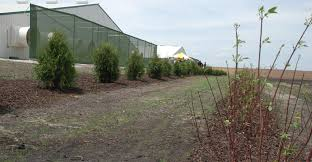 Wall Defense System Knocks Down Odors National Hog Farmer
